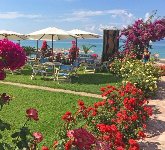 Haris_Hotel_garden